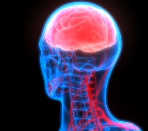 Types of Tumors in the Central Nervous System – Malignant Brain Tumors